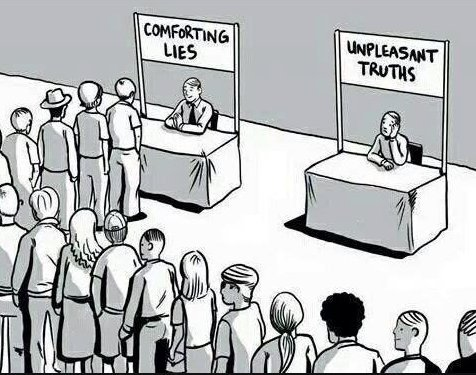 comforting lies, unpleasant truths cartoon